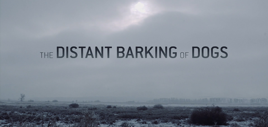 POV: The Distant Barking of Dogs